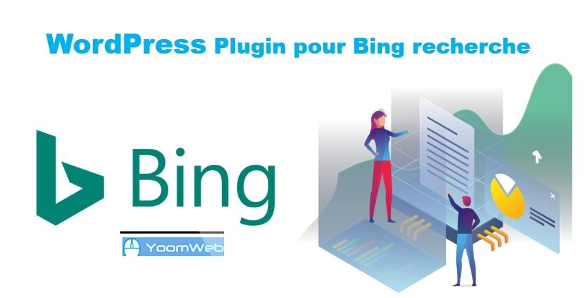 Wordpress bing index